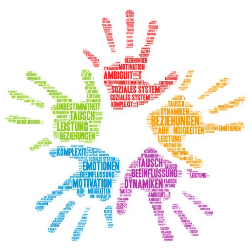 Organisation sozialer Systeme